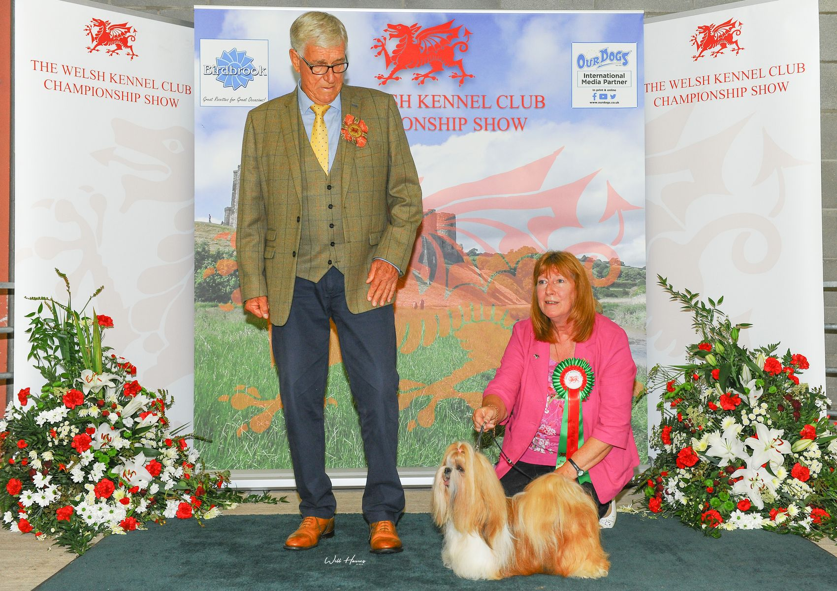 HOME - The Welsh Kennel Club The Welsh Kennel Club